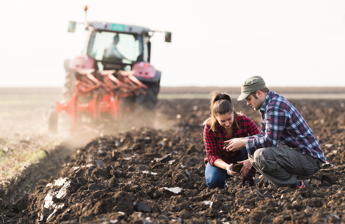 Two plaid clad individuals reviewing soil that's just been tilled.