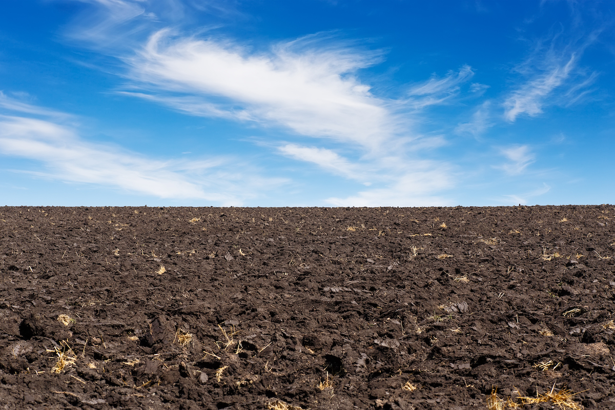 An expansive, tilled field against a bright blue sky.